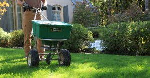 Fertilizer Spreader on Lawn with Shrubs - LawnMate Quality Lawn Care